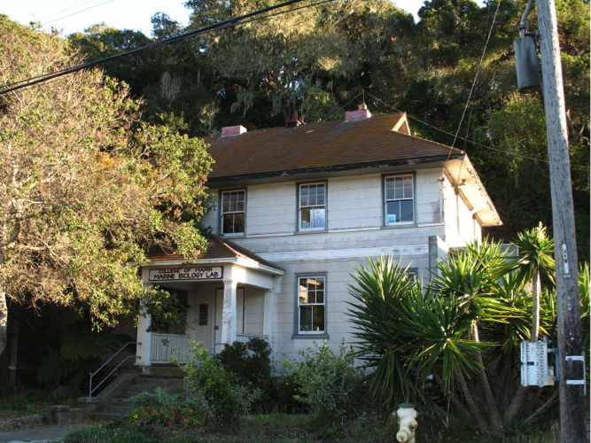 bolinas-bay-station-3