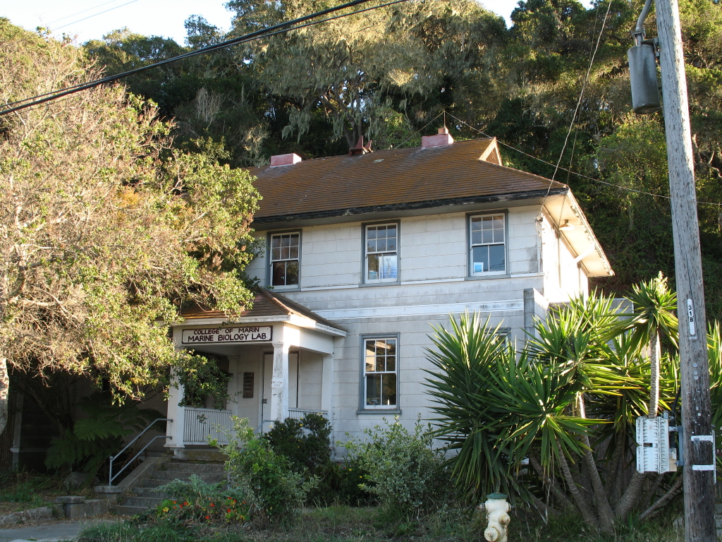 bolinas-bay-station